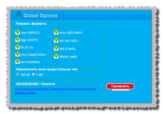 Параметры расширения FVD Video Downloader
